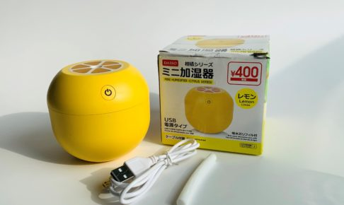 Portable Humidifier picture